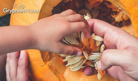 Pumpkin-seed-math main