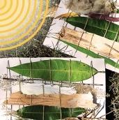 Nature weaving on a cardboard loom activity 600x600 blog thumbnail